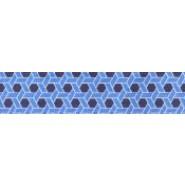 Blue Prism (Buckle Curvy Danas)