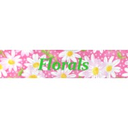 Florals Buckle Training Collar