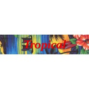 Tropical Buckle Martingale Collar