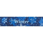 Winter Buckle Training Collar