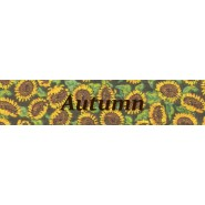 Autumn Leaves Standard Collar