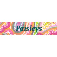 Paisleys  Buckle Training Collar